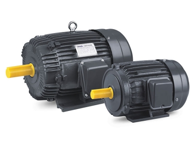 AEEF Series Three Phase Induction Motors